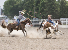 Photo of rodeo in Chatham-Kent, Ontario