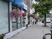 Photo of a Street in Fenelon Falls, Ontario