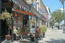 A Photo of Summertime in Stratford, Ontario