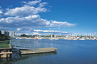 Photo of Whitby Marina and waterfront